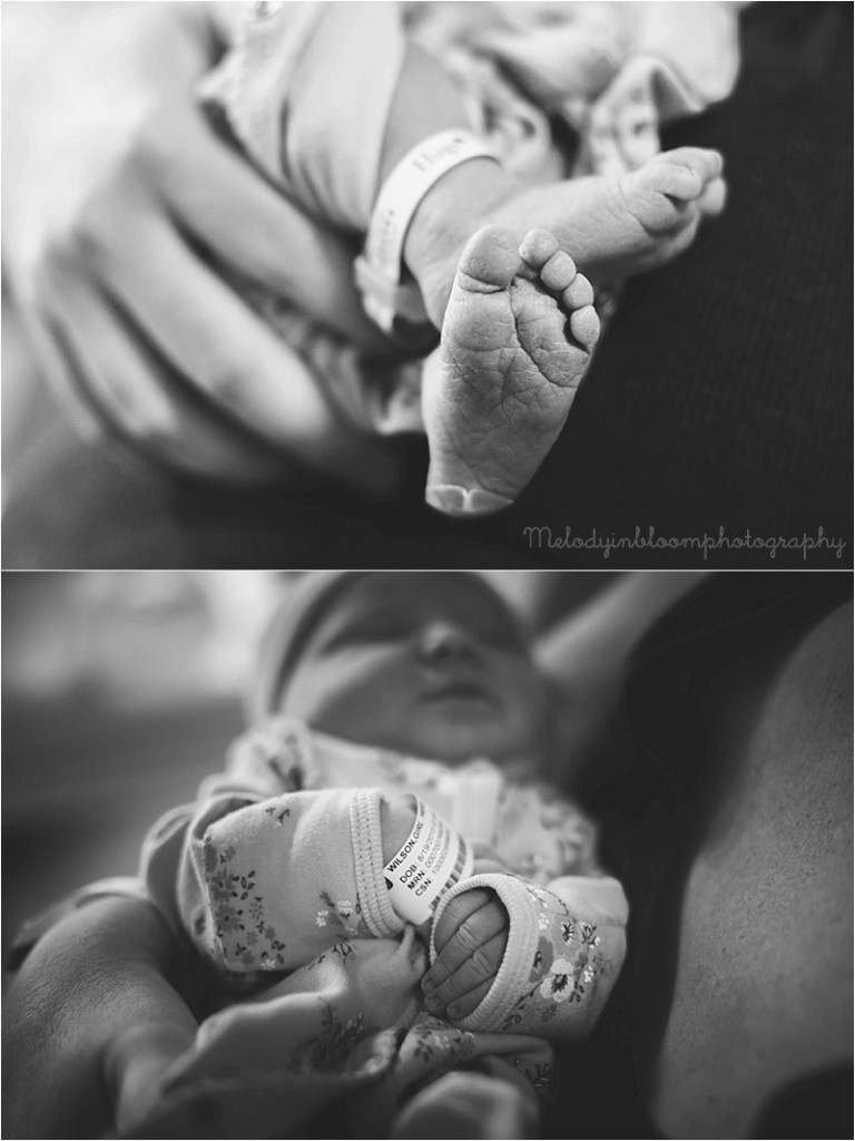 Lake Bluff, IL Newborn Photographer