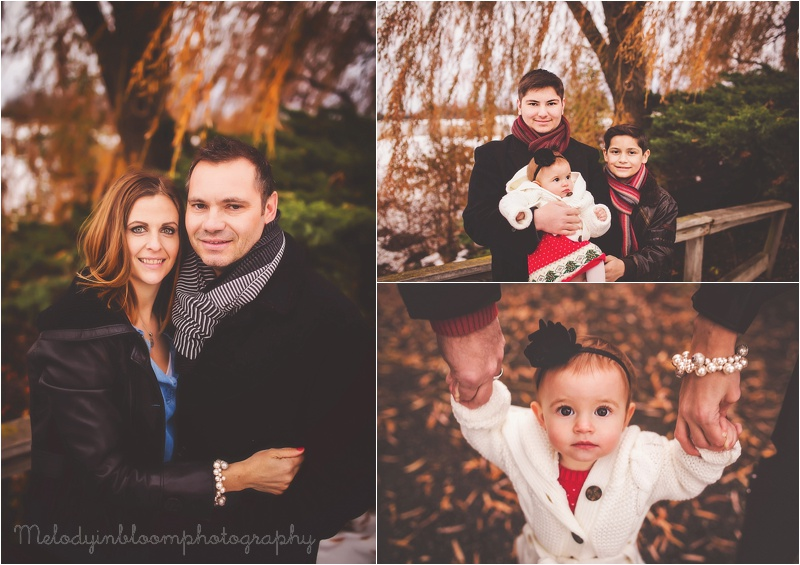 Cook County, IL Family Photographer