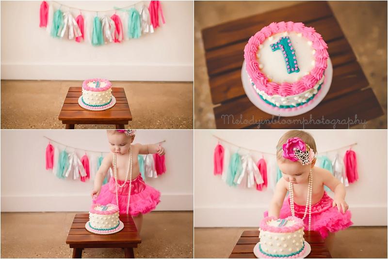 Barrington, IL Cake Smash Photographer