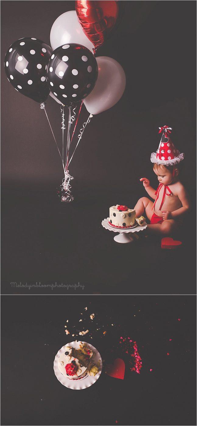 Buffalo Grove, IL Cake Smash Photographer