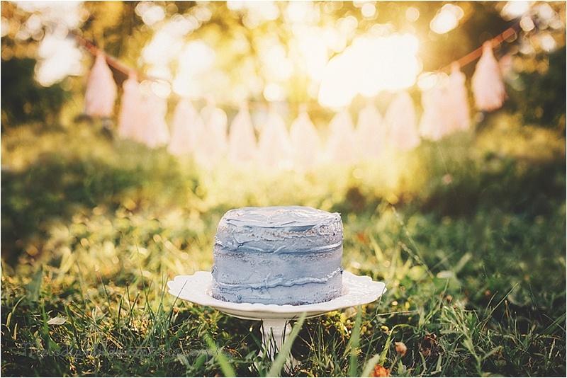 Bellingham, WA Cake Smash Photographer