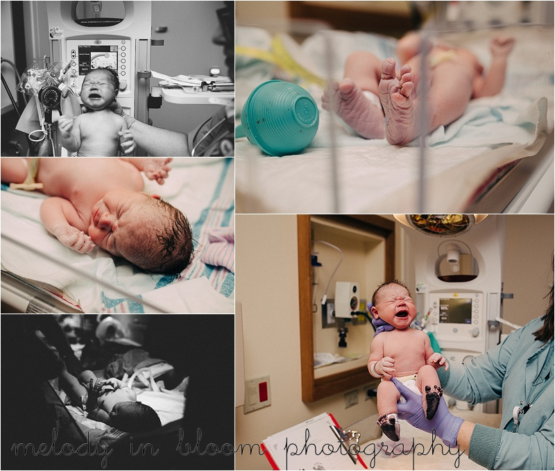 Bellingham, WA Birth Photographer