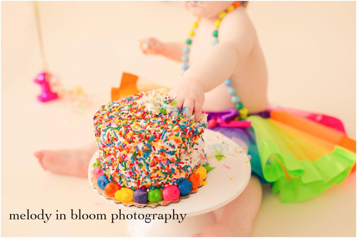 Burlington, WA Cake Smash Photographer