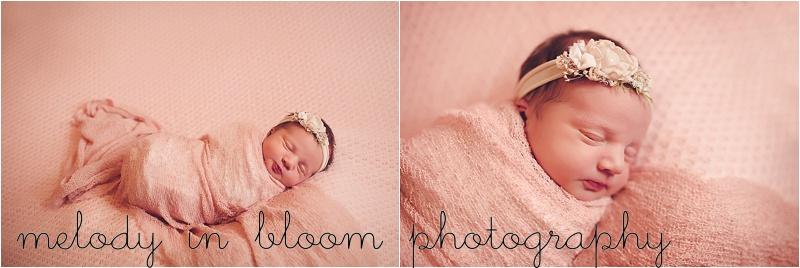Skagit Valley Newborn Photographer