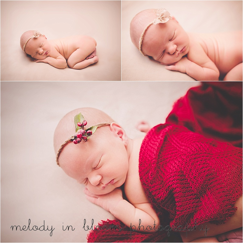 Skagit County Newborn, Lifestyle Photographer