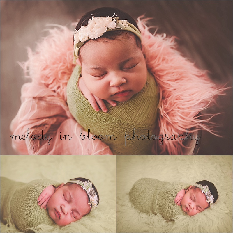 Skagit Newborn Photographer