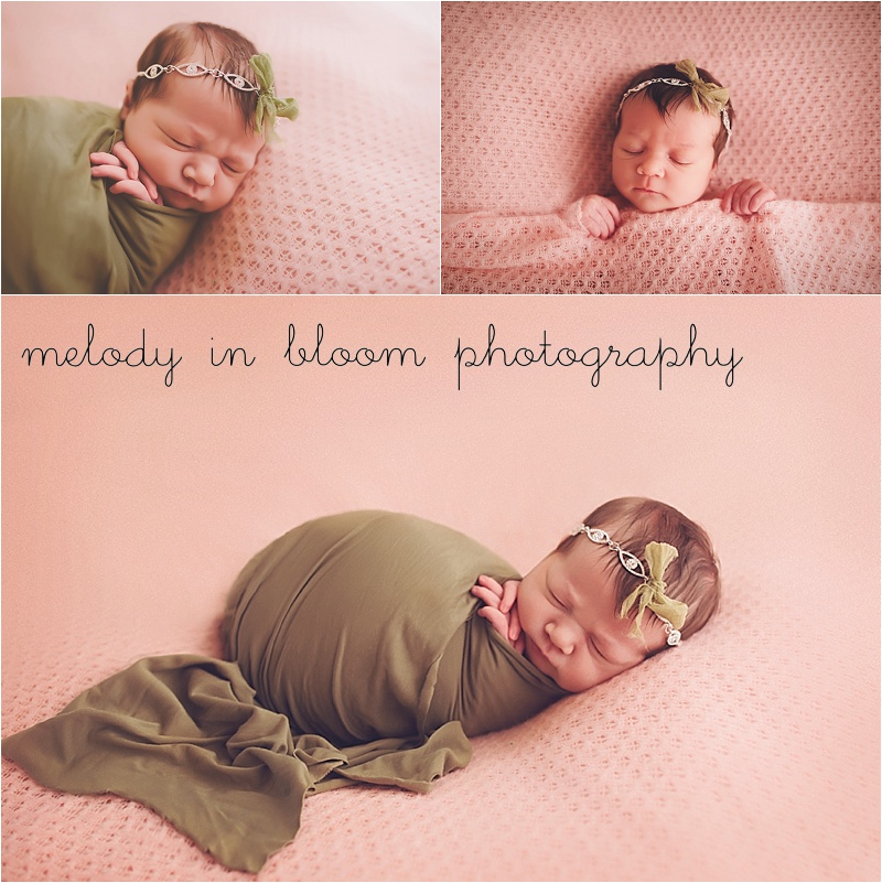 Sedro Wolley, WA Newborn Photographer