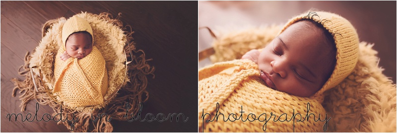 Lynnwood, WA Newborn Photographer