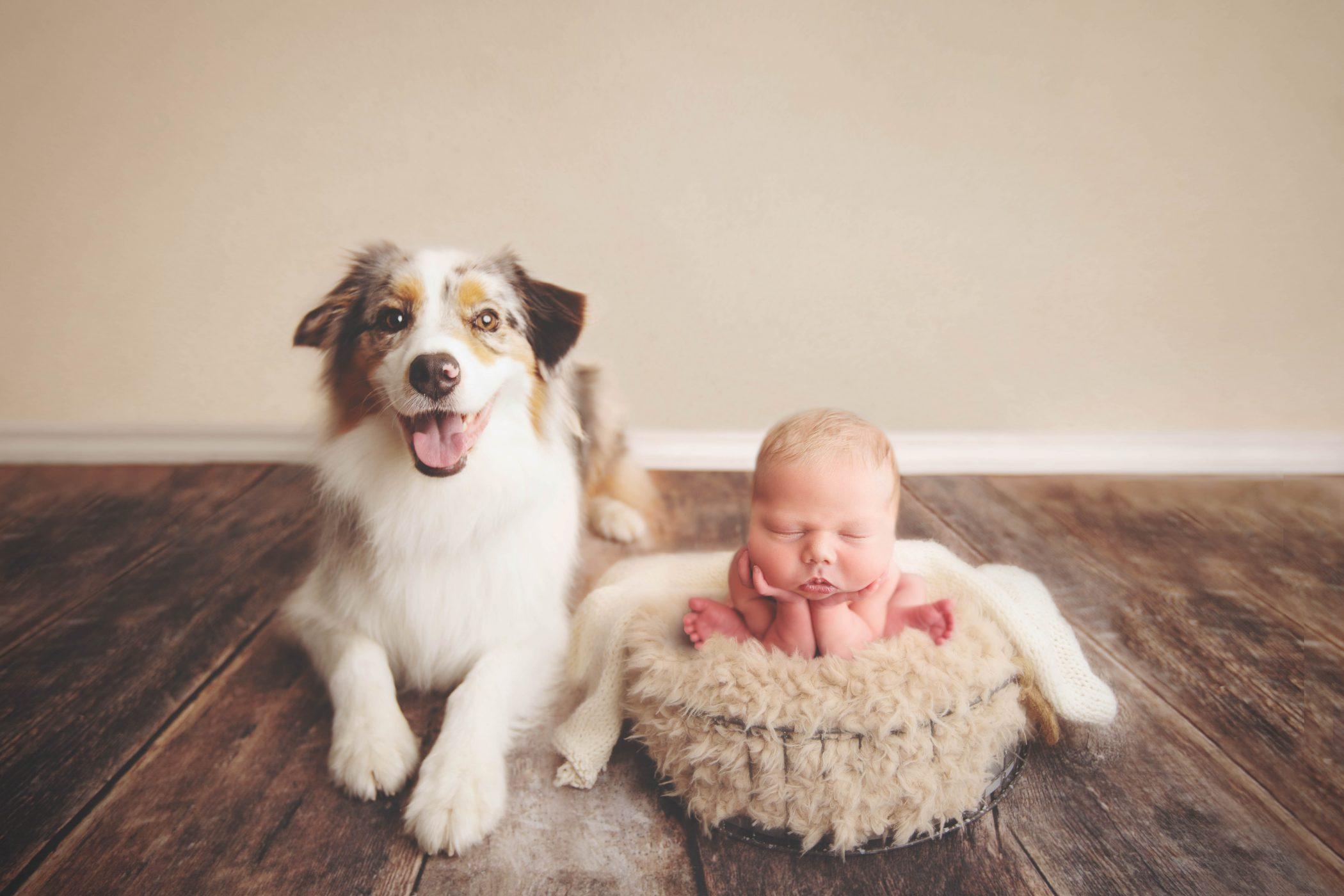 Thousand Oaks, CA Family, Newborn, Child Photographer