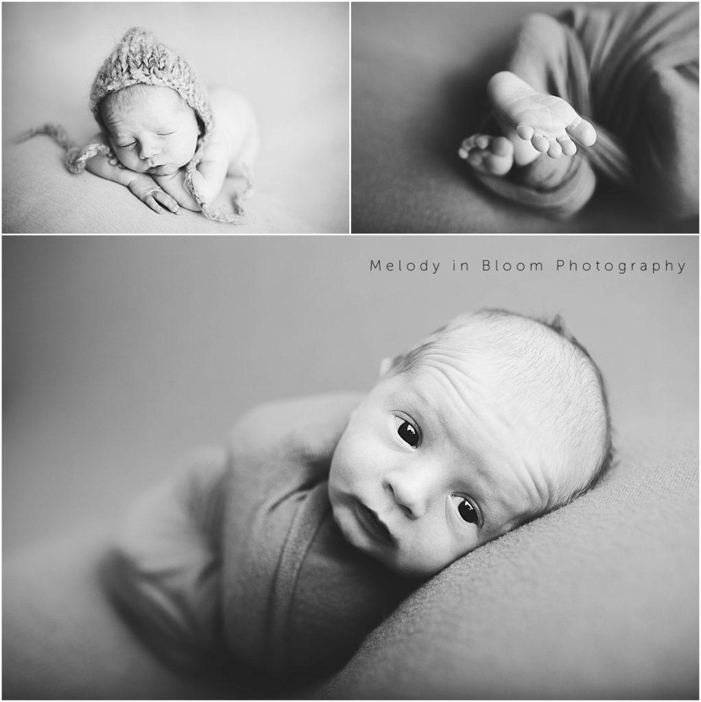 Arlington, WA Newborn Photographer