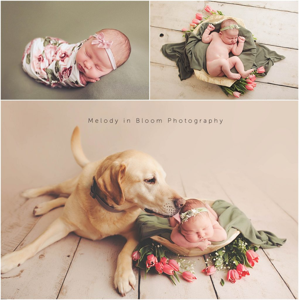 Santa Paula, CA Newborn Session