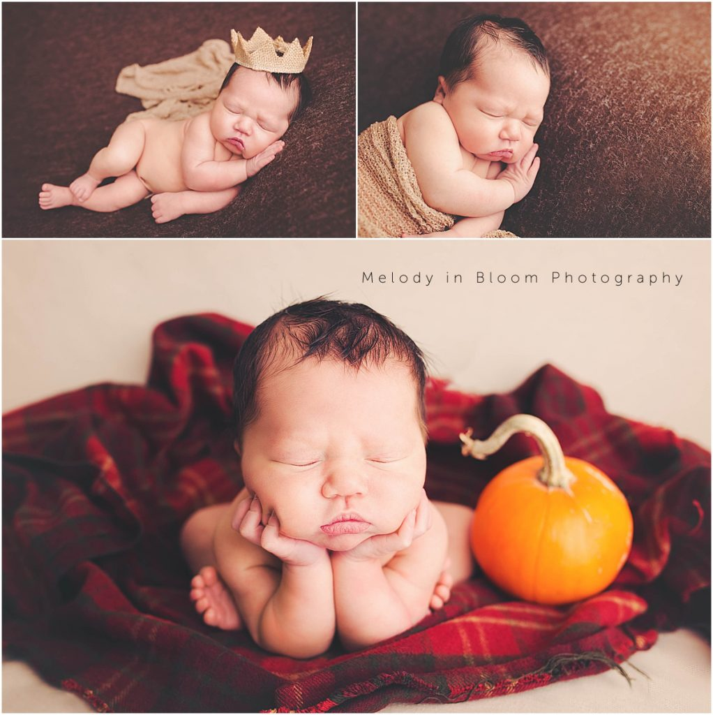 Conway, WA Newborn Photographer